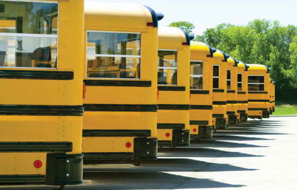 Busses running on SeQuential biodiesel
